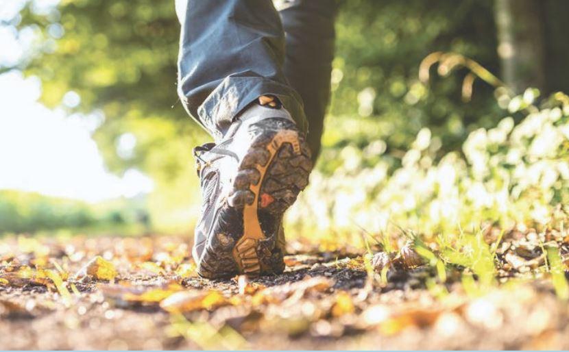 Marcher et écrire